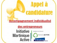 APPEL A CANDIDATURE accomp expert
